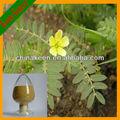 100% extrato natural da planta pó de esteróides saponinas tribulus terrestris