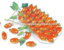 F1 Hybrid Tomato seeds (cherry)