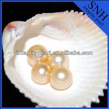 8mm small natural south sea pearls
