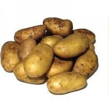 PASSAS FRUIT-EXCEPTIONAL QUALITY POTATOES