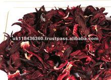 Flor do Hibiscus & Hibiscus esmagado