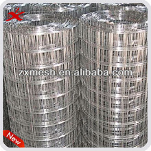 high quality stainless steel welded mesh(factory)