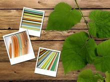hot sell colorful pvc Edge board edge