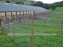 Galvanized farm/grassland/field/cattle/horse/sheep/deer/goat electric fence(Factory)
