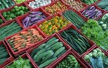 Fresh Vegitables & Fruits