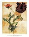 Artesanal mais novo da faca de paleta red poppy Flower pintura da lona