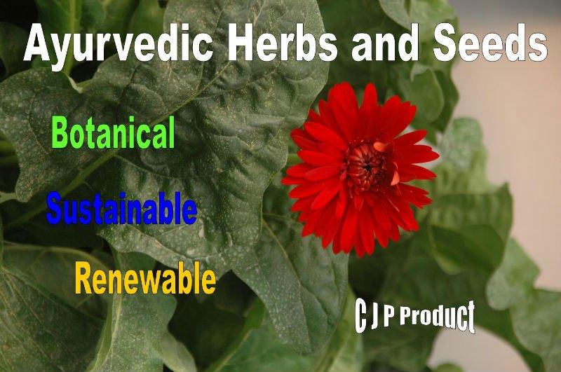 Ayurvedic Herbs and Seeds