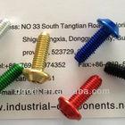 custom colored anodized aluminum screw