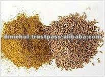 Jeera Seed Gujarat Origin