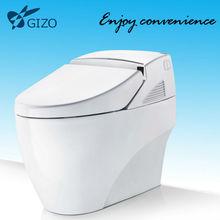 modern toilet design/Led Toilet