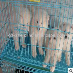 Powder-coating folding dog cage