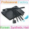5pcs plastic cosmetic brush with Korean cosmetic brush set