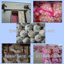 2014 Wholesale China Shandong Organic Fresh Garlic