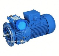 electric motor thermal protection
