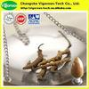 cordyceps sinensis polysaccharides/cordyceps sinensis p.e./natural cordyceps sinensis extract