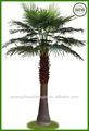 Ao ar livre do jardim de cimento decor/palmeiras artificiais