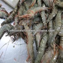 Mariscos y camarón scampi
