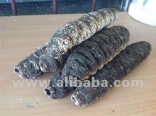 Dried Belizean Sea Cucumbers