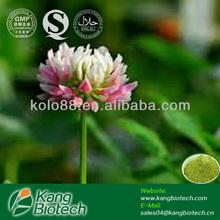 8% 10% 20% 40% 60% Isoflavones Powder Red Clover Extract