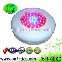 49 * 1 watt Bridgelux chip LED Grow Light, 44 * 630nm Red, 5 * 460nm Blue