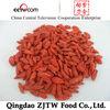 Goji Berry Ningxia origin dried friuts exporter in china