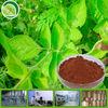 High quality product radix salviae miltiorrhizae p.e