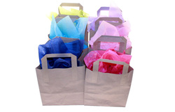 Promotion Cotton Carry Bag Canvas Cloth Bag