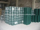 Welded Wire Mesh(PVC/GI)
