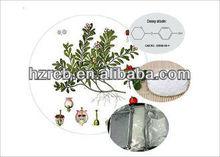 Pure Plant extract deoxy arbutin powder