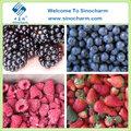 venta al por mayor de alta calidad congelados de bayas frescas frutas