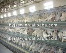 Multi-Tier Chicken Cage