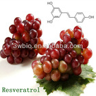 100% Natural Grape Skin Extract Powder , Vitis vinifera juice powder , Vitis vinifera extract