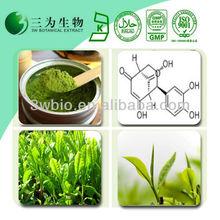 Top Quality Food&Medical Grade Supplement Green Tea Polyphenol Powder,Liquid Green Tea Extract 98%