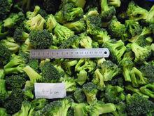 2013 iqf broccoli florets