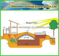 china biogas septic tank