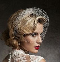 Free Shipping Hot Sale Stunning Net White Bird Cage Wedding Veils
