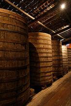 Fine Sugar Cane Liquor From Brazil