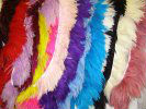 quality natural and dyed ostrich feathers