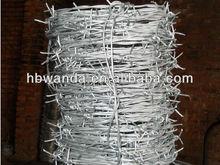 pointe galvanized/Barbed Wire