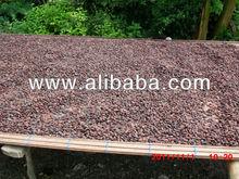 Fermented Cocoa Bean
