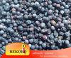 Juniper berries Juniperus communis - herbs and spice