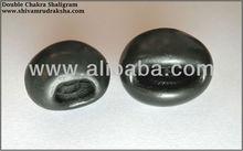 Sudarshana Double Chakra Shaligram Stone