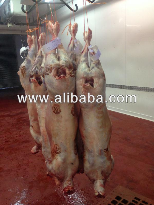 Lamb Halal HMC certified unstunned