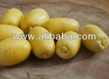 Fresh high quality yellow dates