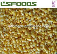2013 new crop IQF frozen sweet corn