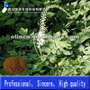 Black Cohosh Extract saponin powder 2.5%