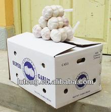 fresh normal white jinxiang Garlic (2013 new crop 5.5cm)