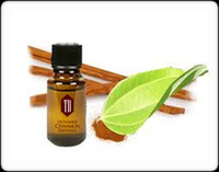 Essential Cinnamon Oil 87% cinnamandehyd for health