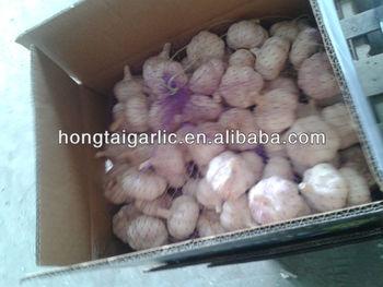 2013's natural garlic/distributor/garlic company