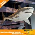 de alta calidad en interiores y de interior de fibra de vidrio utilizado de tiburón